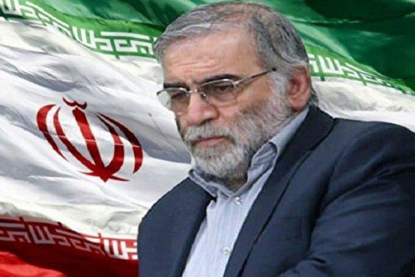 راه دانشمند هسته ای شهید«محسن فخری زاده» هرگز متوقف نخواهد شد