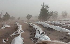 (هواشناسی ایران ۱۴۰۰/۰۳/۳۰| هشدار افزایش سرعت وزش باد و اختلال در تردد جادهای